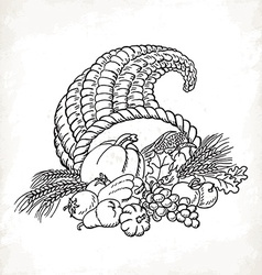 Thanksgiving cornucopia in sketch style Card vector image vector image