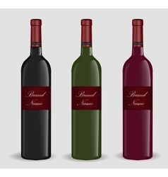 Realistic wine bottle set Isolated on white vector image