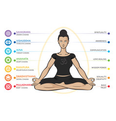 Chakras system of human body vector