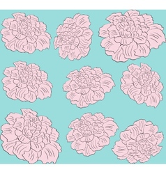 flower pink peony seamless pattern vector image
