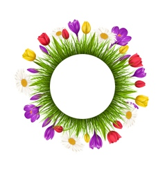 Circle frame with green grass and flowers isolated vector