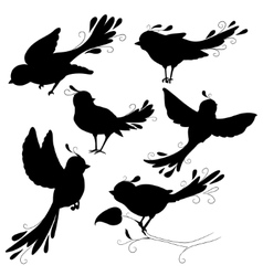 Isolated fantasy black silhouettes birds on white vector image