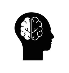Contour silhouette head with brain inside vector