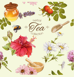 Herbal tea seamles pattern vector