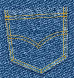 jeans pocket vector image