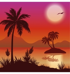 Tropical islands palms flowers and birds vector