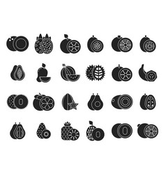 monochrome of different vector image