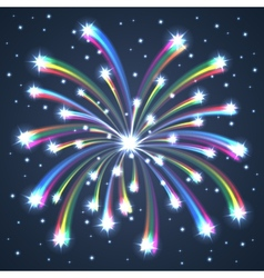 Firework colorful one vector