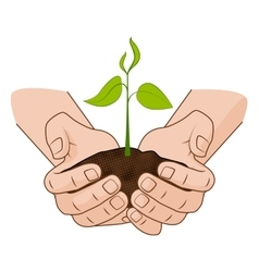 Growing plant in handful soil in hands comic vector