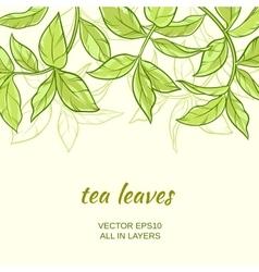 Tea vector