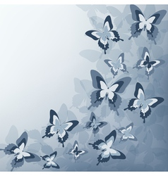 Grey background with butterfly vector image vector image