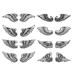 set of vintage wings isolated on white background vector image