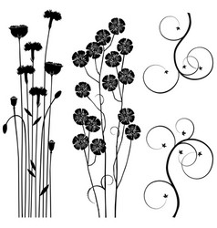 Collection for designers meadow plants set vector