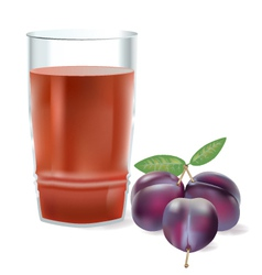 plum juice vector image
