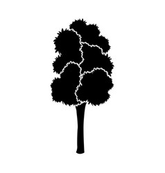 Black tree silhouette leaf foliage natural image vector