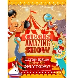 Circus performance announcement vintage poster vector image