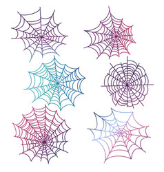 colorful spider web isolated vector image vector image