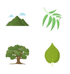 Mountain cloud tree branch leafforest set vector