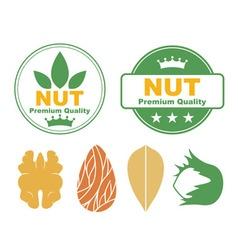 Nut vector image