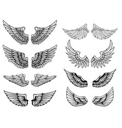 set of vintage wings design elements for logo vector image vector image