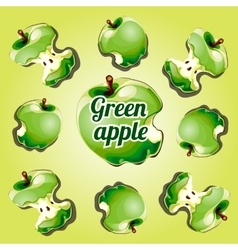 Stump apple green painted from different angles vector image vector image