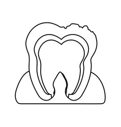 Tooth interior dental care related icon image vector