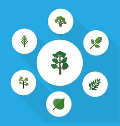 Flat icon bio set of acacia leaf jungle foliage vector