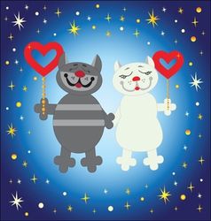 male cat and pussycat vector image
