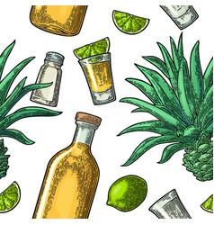 seamless pattern of bottle glass tequila salt vector image