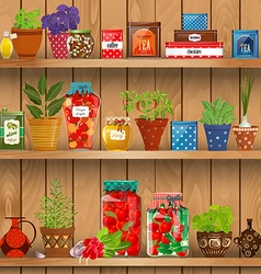 Shelves with fresh produce and herb planted in vector
