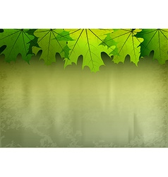 background autumn big top leaves green vector image