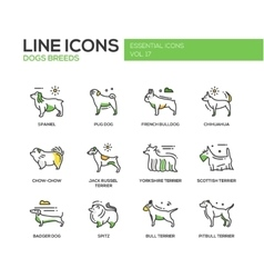 Dog breeds - line design icons set vector