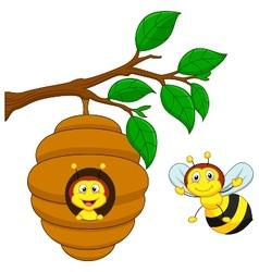 Cartoon a honey bee and comb vector