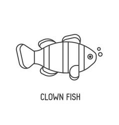 Clown fish icon vector