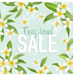 Summer sale banner sale background big sale vector