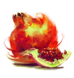 Drawing pomegranate with a slice vector