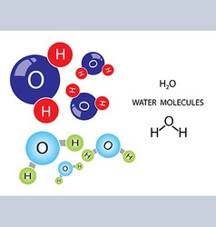 Water molecule vector