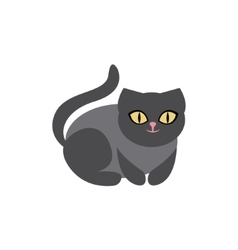Black Cat Breed Primitive Cartoon vector image vector image