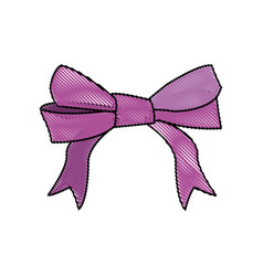 Bow and ribbons decoration element for design vector