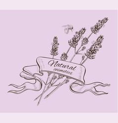 Lavender graphic banner vector