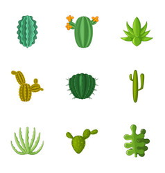 Desert cactus icons set cartoon style vector
