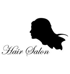 Hair salon vector image