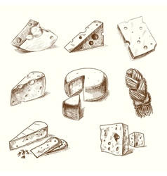 Hand drawn doodle sketch cheese with different vector image vector image