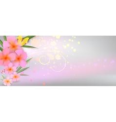 pink plumeria background vector image vector image