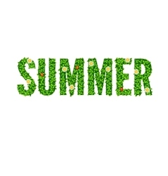 Word Summer with green leaves vector image
