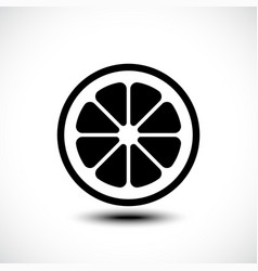 lemon orange lime grapefruit slice vector image