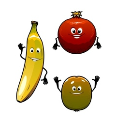 Green kiwi red pomegranate anf yellow banana vector