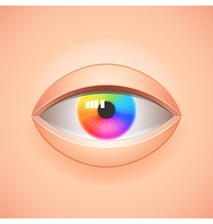 Human eye with rainbow iris background vector
