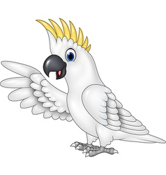 Cartoon funny white parrot presenting isolated vector