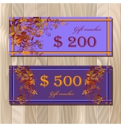 Voucher Gift certificate Coupon template for vector image